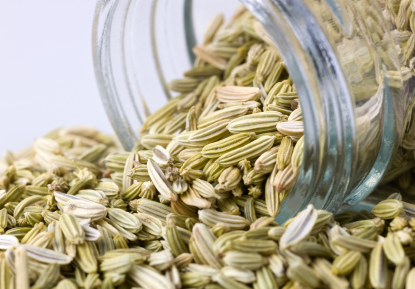 Fennel Essential Oil, Sweet
